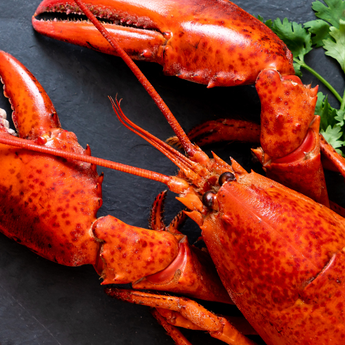 LOBSTER COMBOS